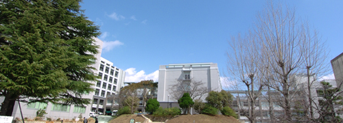 Graduate School of Science, Faculty of Science, Kobe University
